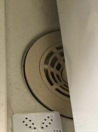 洗濯機の下のこういう穴からゴキブリは入ってきますか?