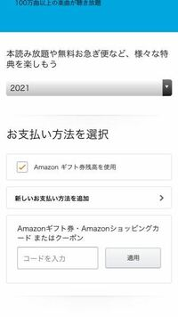 アマゾンのプライムスチューデントに登録しようとして6ヶ月無料で試すを押してこの画面から進みません どうしたらいいか教えて下さい