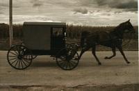 素朴で美しい馬車! 国地域、風俗意識、馬車構造、美的感覚 : : レンズメーカーのカタログに載っていた写真です。カラー写真ですが、セピア的色彩で寒冷気候の地域または季節のようです。 四輪馬車を引く軽...