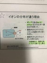 この写真の説明は細胞内をカリウムイオンだけにしたいから細胞外からカリウムイオンを取り込むってことですがなぜですか?