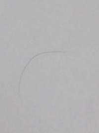女です  胸にこんな長い毛がはえていました!  誰か胸の毛の処理の仕方を教えて下さい