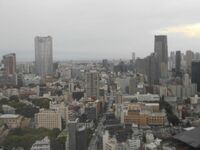 この画像は六本木ヒルズと東京ミッドタウンです。 あと数年以内に、ここに300mくらいの高層ビルができます。  高層ビルができたら、東京ミッドタウンが見えにくくなるのは想像できます。 新宿高層ビルって見...