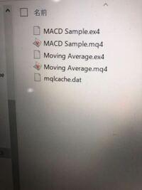 MT4 training ver 4 .1 .exeがないのですが何故ですか?