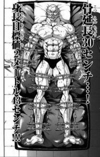 骨延長手術って、後遺症なく身長を50センチも伸ばせるものなのですか? チャンピオン連載中の刃牙において、ジャック・ハンマーというキャラが、ひたすら強い肉体を手に入れるために、193センチあった身長を骨延長手術によって20センチ伸ばして、213センチになっていました。  その後、さらに強い肉体を目指し、「全ての敵を見下ろせる」よう、再び骨延長手術によってもう30センチ伸ばして、身長243セ...