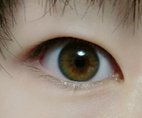 この目はどんな色の目をしていると思いますか?よく友達から目が綺麗と、いろんな人に言われたり、緑っぽいやら、カラコンとも言われたことがあります。少し気になったので質問させていただきます。(写真は光に当...