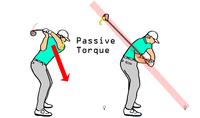 バックスイングでの右肘支点  シャットでテークバックし、左腕がローテーションするとき、 左腕のローテーションの駆動力は、クラブ及び腕の慣性と右肘の支点により構築される運動系であってますか?