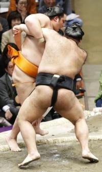 千秋楽の高安の相撲は淡々と終わっちゃった感じしちゃうコレって? 初場所千秋楽の高安vs魁聖は左四つの高安と右四つの魁聖だったが左四つになった高安が魁聖の右小手投げにも動じずに寄り切りました。  高安が9...