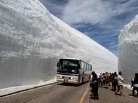 北陸地方の雪と、北海道の雪では、かなり質や対処に違いがありますか? 福井県越前市に知人が住んでいます、彼からの手紙には、世界有数の豪雪地帯である北陸地方に在住だから、冬は家の雪かきが欠かせないし重労...
