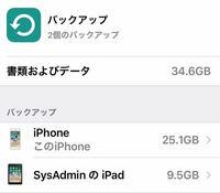 AppleID1つでiPhone、iPadを共有しています。今現在icloudのストレージをみると、iPhoneに2つのバックアップが入ってる状態です。それをiPhoneにはiPhoneだけのバックアップ、iPadにはiPadだけのバックアップとい...