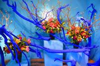 假屋崎省吾の作品 けっこうアクが強いし洗練されてないですよね?ちょっと感覚的に古く見えるんですが日本のフラワーアーティストとしては皇室のイベントでも仕事されてるし第一人者という事で しょうか?