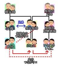 """画像の""""いとこのいとこ""""同士が知り合って結婚することになり、子供も授かりました。生まれてくる子供に遺伝的な意味での障害確率はありますか?"""