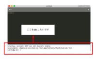 Sublime Textについて  プログラミングの勉強を始めて1週間です。 Sublime Textを使用しようと思いインストールし、 日本語に変換しようとネットで調べ作業をしていたのですが、  ・コードをコピペしても日...
