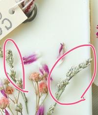 このドライフラワーで白っぽい小さな花は何ていう名前ですか?  ご存知の方よろしくおねがいいたします。