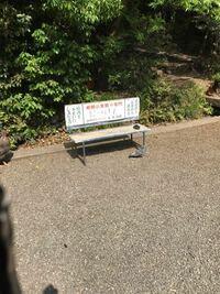 東京都多摩地区のトップ名門小学校は桐朋小学校ですか。 近年、国分寺市に早稲田実業小学校が誕生したので、桐朋小学校はその座を譲ることになっていますか。  ちなみに、武蔵野市にある成蹊小学校は三菱の幹部のお子さんとか昔から通わせているらしいです。  国立学園は、かなり昔でしょうか。一橋大学の教授のお子さんを通わせたらしいですね。