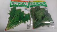 ほうれん草の種を 買いました  真冬に 収穫したいんですが  茨城県あたり 何月に 撒けば いいですかね?