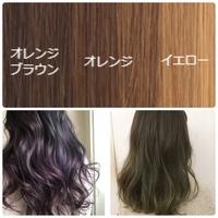 髪色について質問です。 今現在の髪色は、室内で見るとオレンジブラウンに近く、屋外で見るとイエローに近いです。美容院では、ブリーチした?と聞かれますが、してないです。 今の髪色からブ リーチせずに、下の二つのような髪色にすることは可能でしょうか?左下はパープル系、右下はグリーン系です。