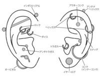 ピアス女子は男受けは悪いでしょうか? 今、高3なのですが、受験が終わったら私はピアスを開けたいと思っています。ボディーピアスは開けるつもりはありませんが、耳に数ヶ所開けたいと思って います。今考えているのは、右耳に耳たぶ&インダストリアル、左耳に耳たぶ&アンテナヘリックス&ヘリックスをと思っています。個数は決めていません。 今日、彼氏に、「私がピアス開けたらどう思う?」と何となく聞いてみ...