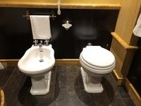ヨーロッパのトイレ事情 最近ヨーロッパを旅行したのですが、トイレの横に謎の手洗い場?があるのです。これは手洗い場なのでしょうか?それともまた別の様式のトイレなのでしょうか?