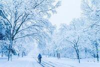 沖縄県民は雪国に憧れとかありますか?