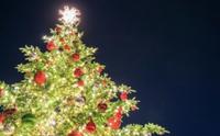 ◯◯生活保護世帯、母子家庭生活保護世帯は他人様のお金でクリスマスは外食してもいいのですか?  クリスマス クリスマス