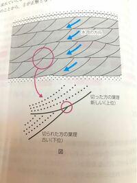 クロスラミナの成因が(色々調べましたが)理解できません。下位上位の判定や、水流の方向の判定はやり方を暗記しているのでわかります。ただ、どこで、どれくらいの時間をかけて、どのように、クロスラミナができ...
