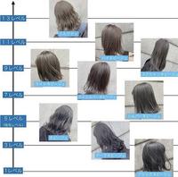 バージン毛からブリーチ込みのダブルカラーでどこまで明るくできるものでしょうか? 個人差あると思いますが、画像の中から大体でいいので教えてください。