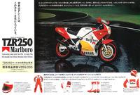 タバコのスポンサーカラーのレプリカバイクが80年代は売れたと聞きますが。 ・・・・・・・・・・・・・・・・・・・・・・・・・・・・・・・・・・・ ですがそんなマルボロとかラッキーストライクのバイクを...