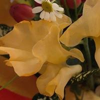 卒業式で花束を貰いました。 このお花すごくいい匂いがするんですけど、なんて言うお花かわかる方いらっしゃいますか?