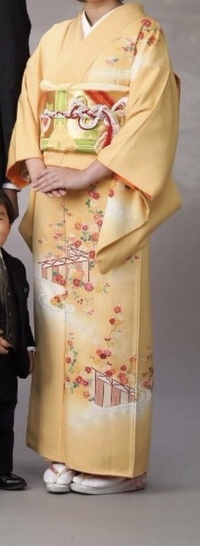 入学式に着物を着ようと思っています。 半襟は長襦袢に 白いものが縫い付けてあります。  帯、帯揚げ、帯留めは 成人式に使ったものしかありません。 新しく買い替えた方が良いでしょうか ?  この写真は...