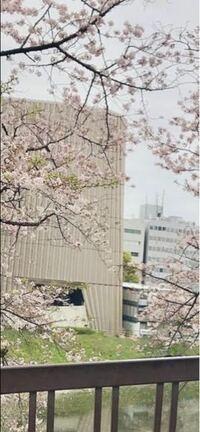 東京在住の方に質問です。 写真に写っている建物は何という場所でしょうか…? 恐らく円柱型の建物で縦筋が沢山入っているように伺えます。東京付近の大学のすぐそばで桜が生えている道があり近くにはため池のよう...