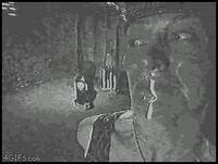 怖いgif画像とかでよく出てくるこの画像の元の映画?の名前わかりますか?