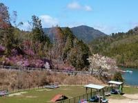 京都の釣り池ですが、どこのあたりでしょうか?