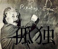 算数、理科、そして数学、物理学、化学(科学含む)等が生まれつき得意な方へお伺いをいたします。 ・ ・ どちらかというと生まれつきの性格等も含めて ❝孤独❞ が好きな方でしたでしょうか。