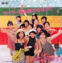 おニャン子クラブ 誰が好きでしたか?  国生さゆりさん  新田恵利さん