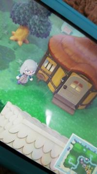 住民 断られる あつ森 キャンプサイト