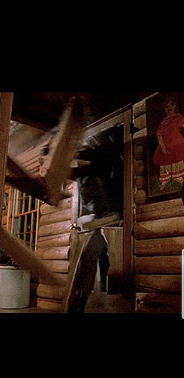 13日の金曜日完結編(4作目)でジェイソンがトミーの家?のドアを突き破って来るシーンの事なんですけど、あれを再現するとしたら相当な筋力と押す力(推進力?)と木の繊維?に沿って力を加える技術が必要になってきま すよね。ジェイソンだからできる事(ジェイソンは192cm114kg 筋肉質)であって一般の人がやるのは到底不可能ですよね。前置きはここの辺にしておいて、あのシーンを撮影する際はジェイソン...