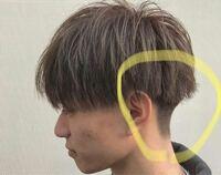 このような後ろの刈り上げに髪の毛を被せる刈り上げはなんというのですか?