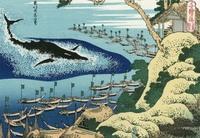 浮世絵について質問です。  葛飾北斎 千絵の海 五島鯨突 ごとうくじらつき  というこちらの浮世絵ですが、鯨の顔周りに書かれている黒い線のようなものは何を表しているのでしょうか? 何卒よろしくお願いし...