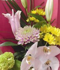 さっき父親が母親に買ってきた花束なんですけど、母親が仏壇用の花に似てるって言って泣き出しちゃって、、これって仏壇用のお花ですか???