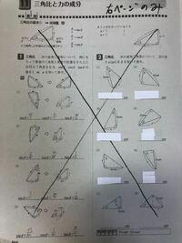 右半分の解答お願いします! 大きなバツは無視してください。