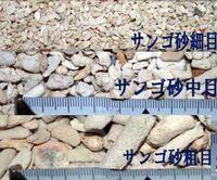 海水魚水槽のろ材をサンゴ砂を使用したいのですが、どのサイズを買えばいいと思いますか?