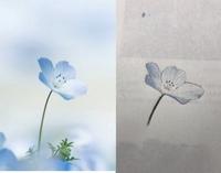 デッサンしたのでアドバイスお願いします。 使ったものは ・シャーペン ・色鉛筆 です。 花を描いたのは初めてです。