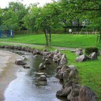 公園の小さい川の中の小魚は、メダカよりもアカヒレが多いのではないかと思いますが、実際にはどうなのでしょうか。 ・ アカヒレがメダカよりも耐寒性があるので、水中ヒーターがない公園内の小さい川ではアカヒレが放流されていれば、アカヒレの生存率が高いのではないかと思います。