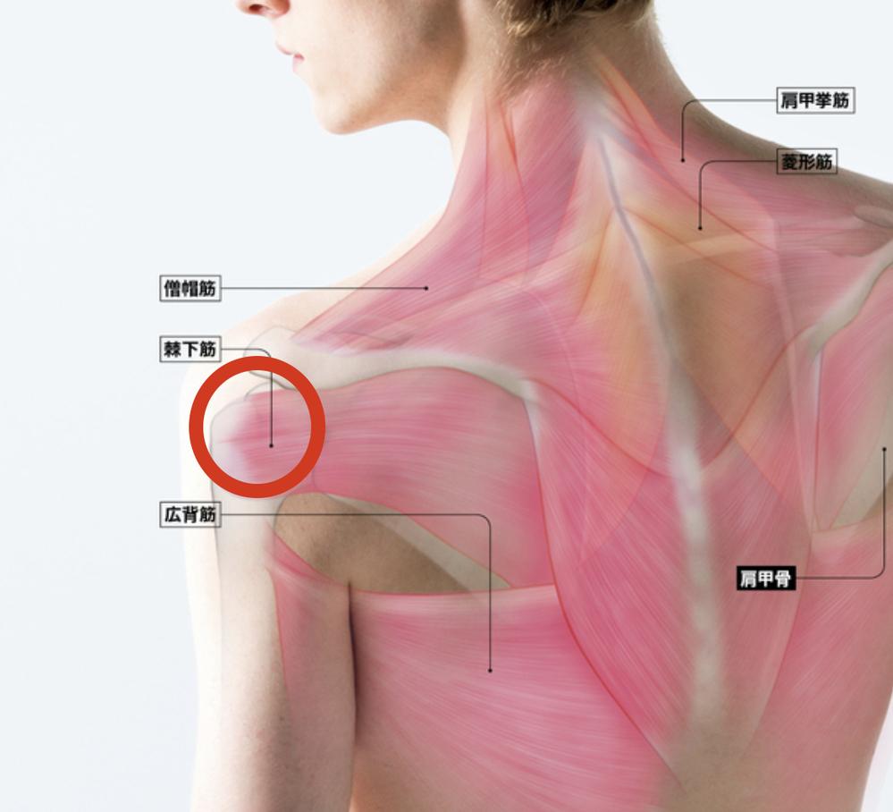 肩の痛みについて 普段ベンチプレスは75kg-80kg位やっていてコロナの影響で、できなかっ...