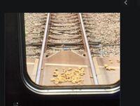 線路の置き石を見ていて思ったのですが 電車脱線の仕組みが知りたいです  線路には2つの出っぱりがあって、 その出っ張りをサイドで車輪がサンドイッチして進んで行きますか? それならば出っぱりの部分に置き石...