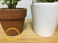 植木鉢についてです。 普通の植木鉢だと底から2,3mmの高さまで横に穴が開いていて余った水が横に抜け空気が入る構造になっていると思うのですが、先日購入した植木鉢にはそれがありません。植 物に悪い影響がな...