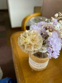 ドライフラワーの品種について この黄色?ぽい花はなんの花ですか?  わかる方、回答お願いします。