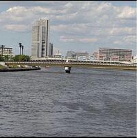 この景色はどこの景色ですか? 奥に大きな橋が見えます。 東京の隅田川沿いのようですが。