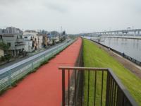 どうして東京の海抜ゼロメートル地帯は存在するのですか。 荒川放水路ができる前、海だったとも思えません。 地盤沈下などですか。