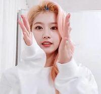 韓国のアイドルが着けているこのような前髪を立ち上げる時に使うピンはどこで購入できますか??